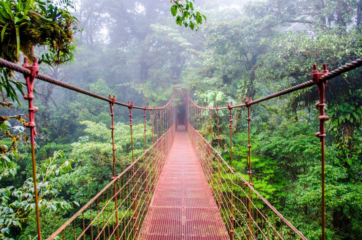 best things to do in Monteverde
