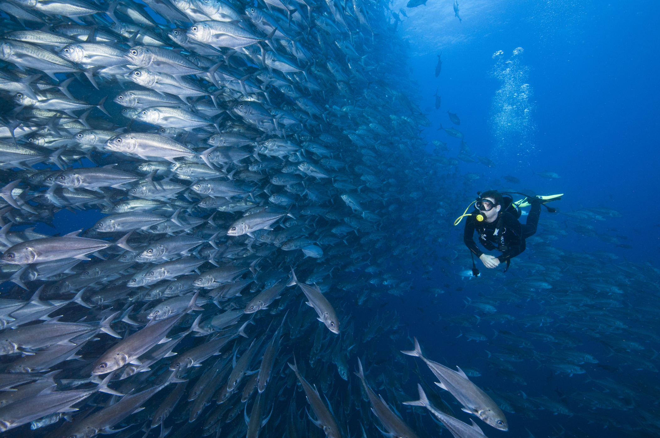 Diving in Central America