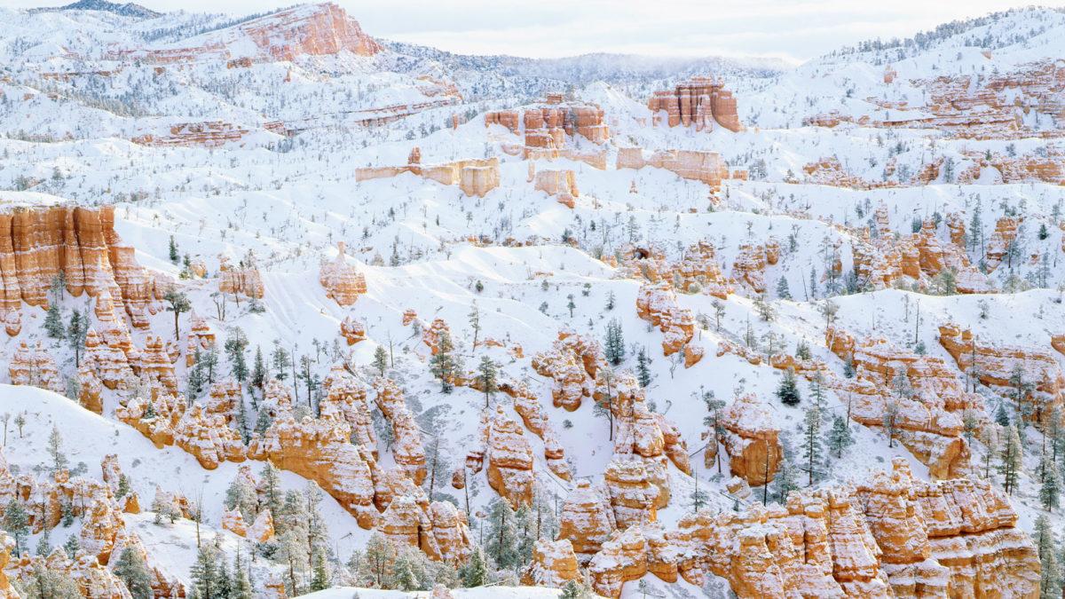 6 Best National parks to visit in December