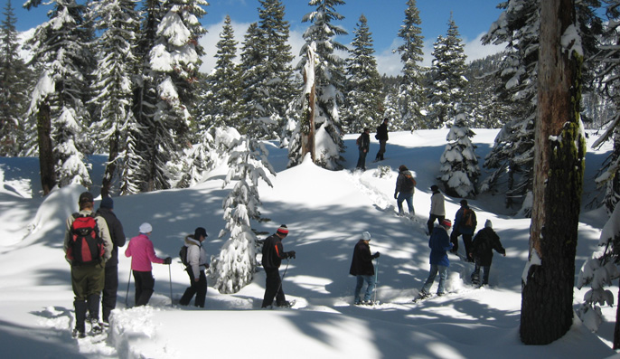 Things to Do in Crater Lake in Winter