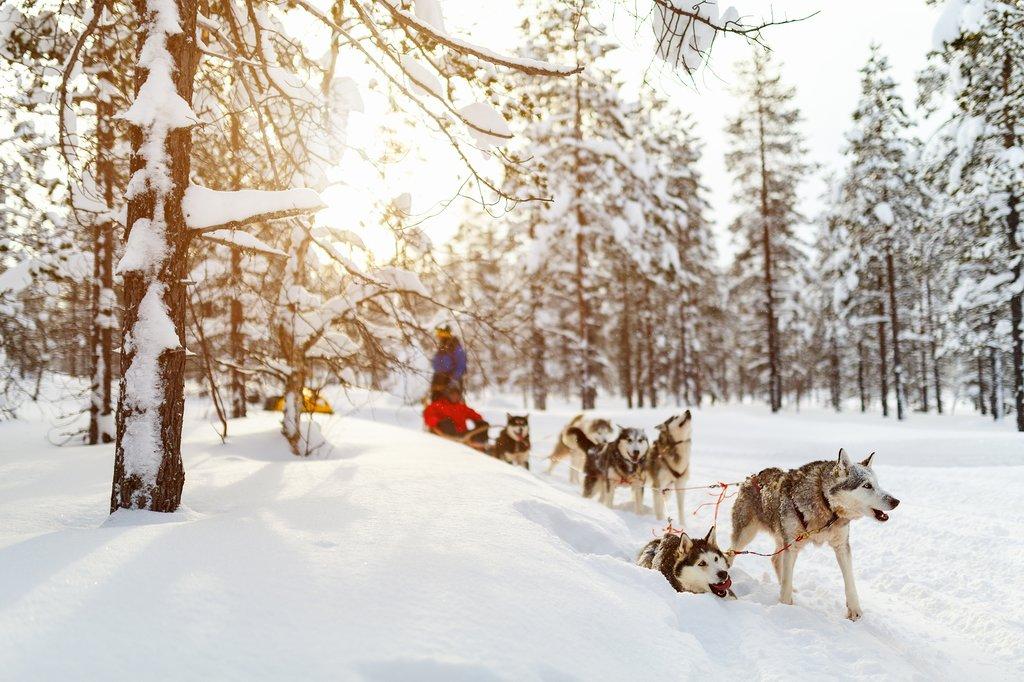 Tromsø Itinerary for Winter