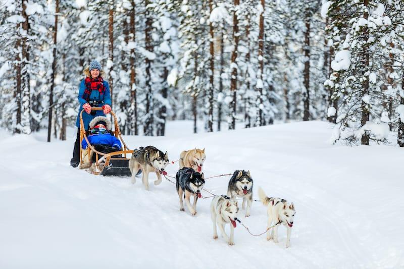 best Rovaniemi tours