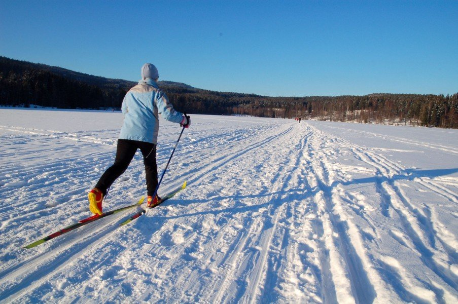 things to do in Oslo in winters